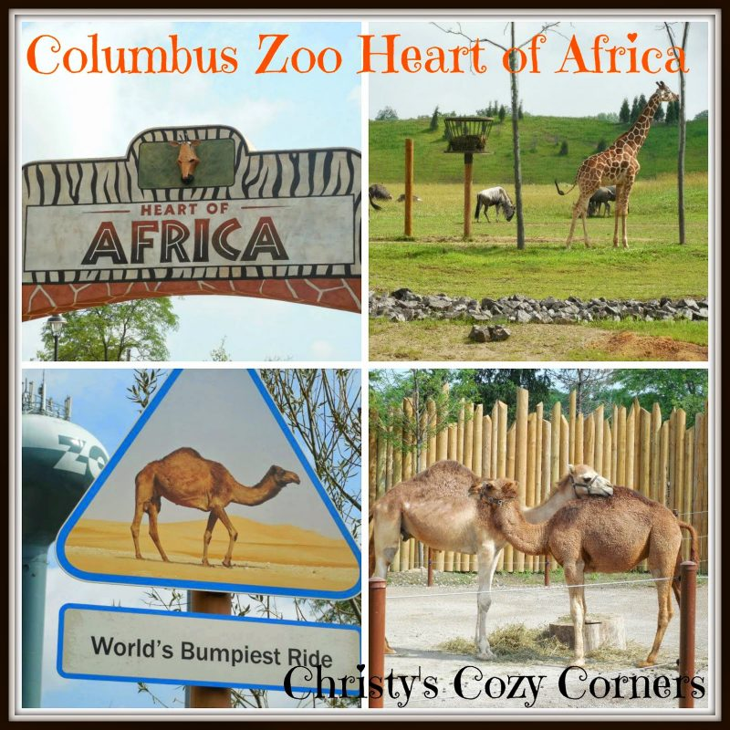 Heart of Africa at the Columbus Zoo