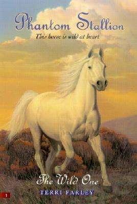 Books for Kids Who Love Horses including The Phantom Stallion