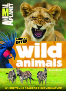 Animal Planet Animal Bites Wild Animals