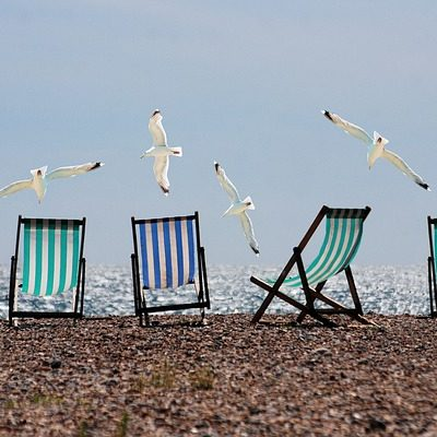 Take these 5 Books with you to the Beach