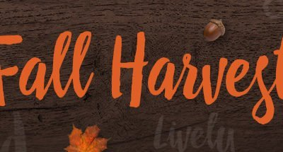 Hallmark Fall Harvest Movies