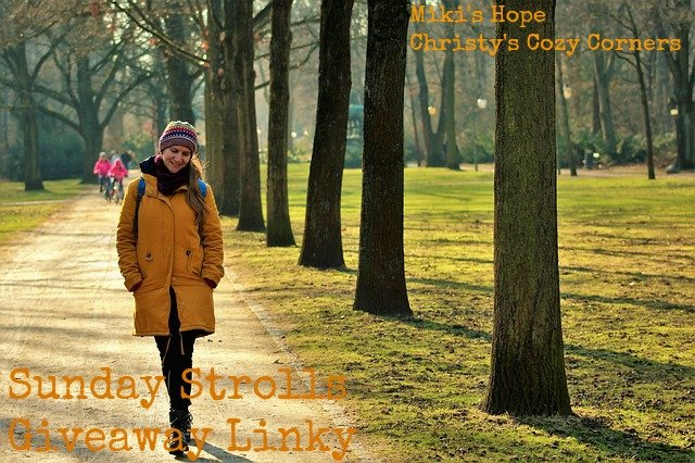 Sunday Strolls Giveaway Linky 10/23-10/30