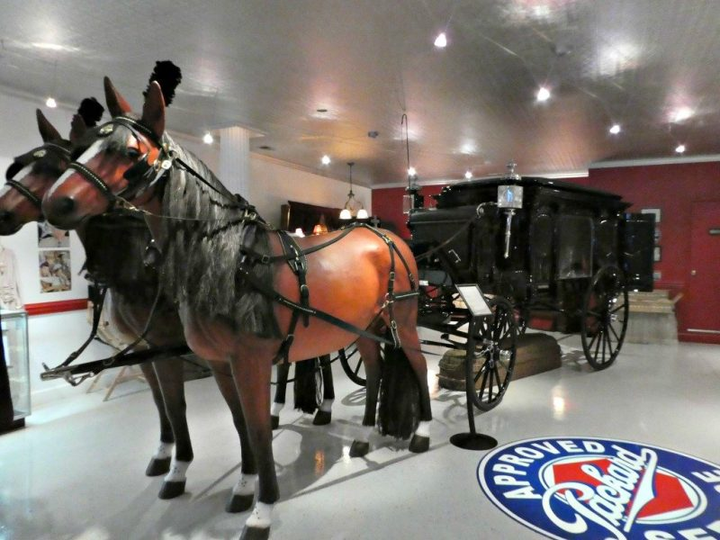 Horse drawn hearse and ambulance