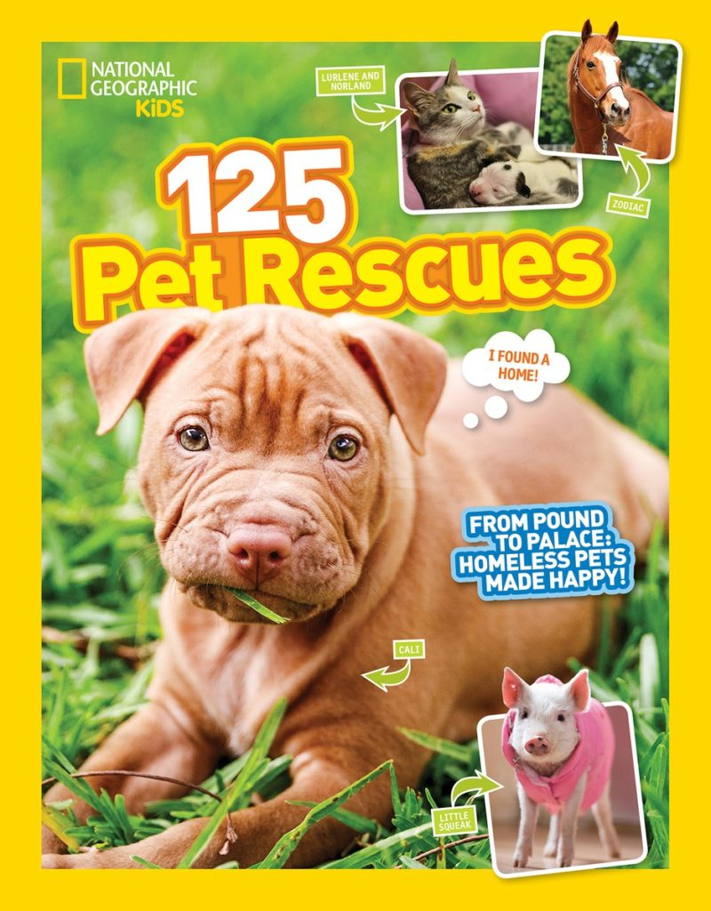 Celebrate National Pet Month with these Fun Books