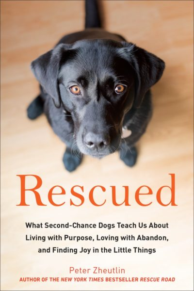 Adopt-a-Dog Month & RESCUED: What Second-Chance Dogs Teach Us