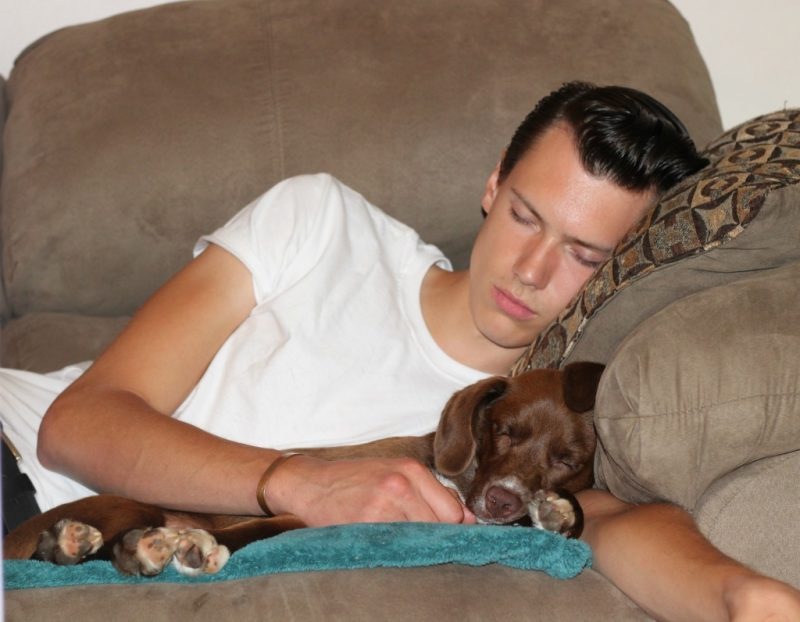 Kyle and Duke sleeping on the couch.