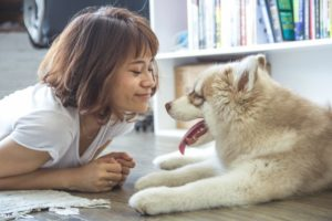 Benefits of Becoming a Rover Pet-Sitter