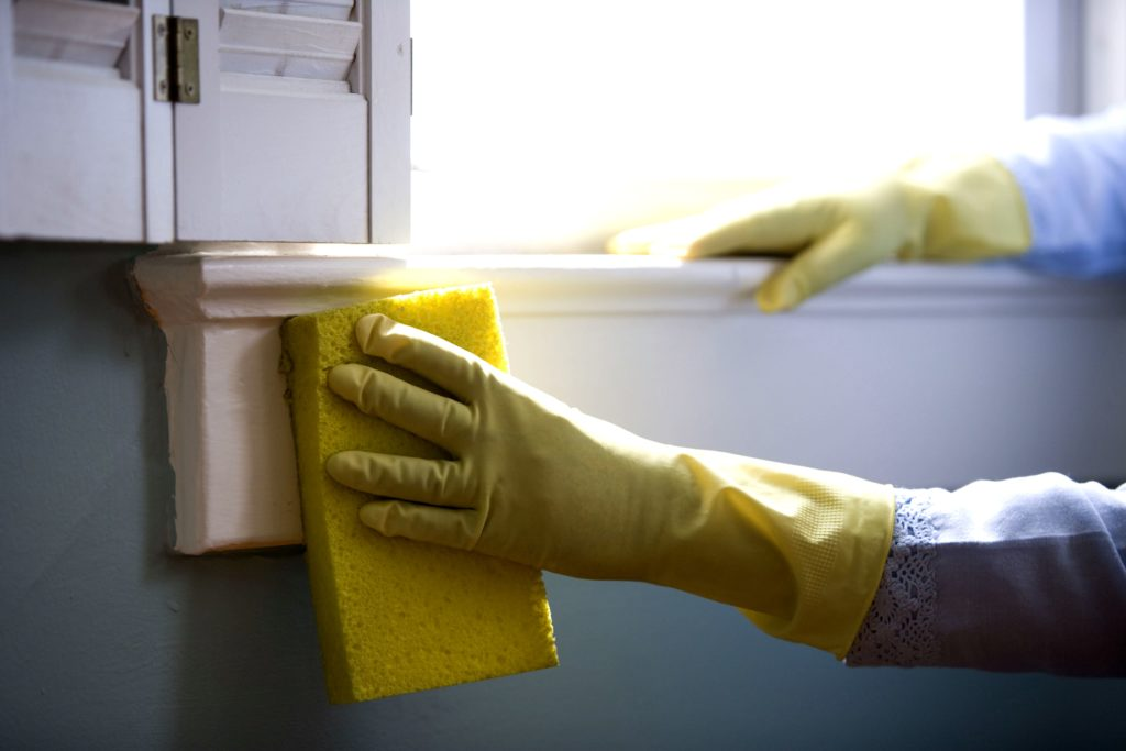 House Cleaning and Home Organizing this January