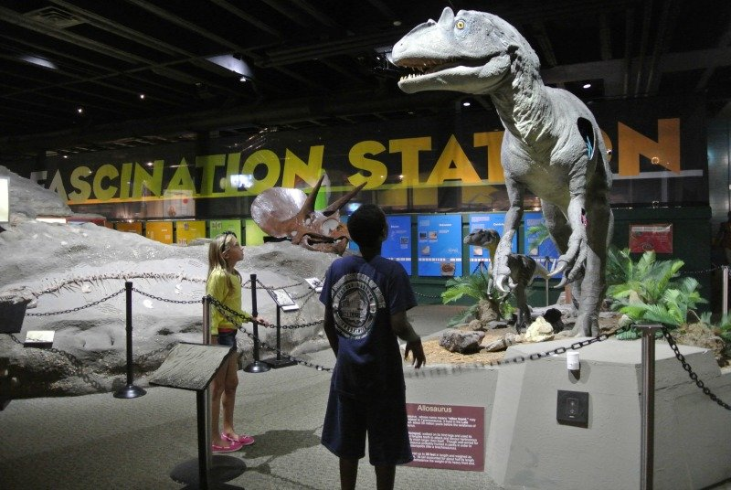 Summer Fun for Kids In And Around Canton, Ohio with Pigskin's Pals