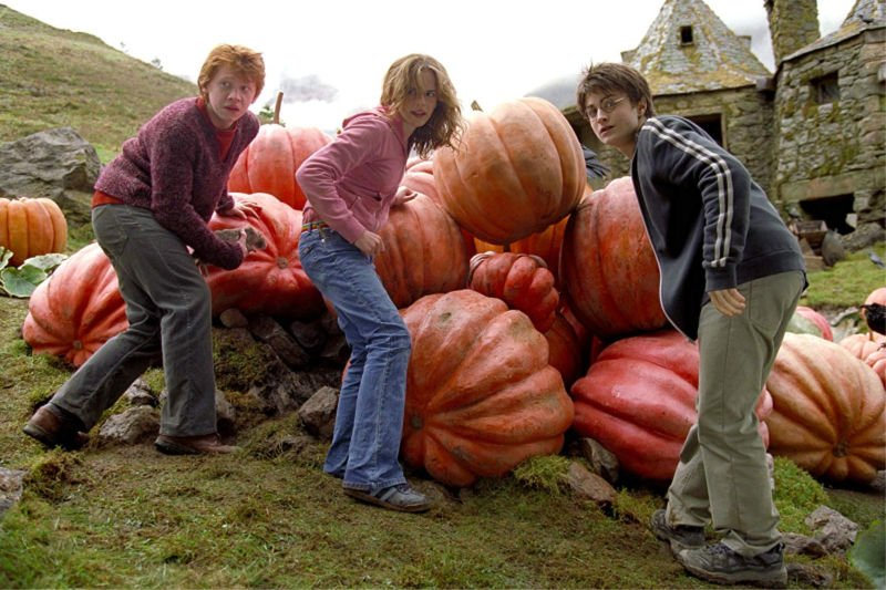 Hagrid's Hut and Pumpkin Patch Dessert Harry Potter and The Prisoner of Azkaban
