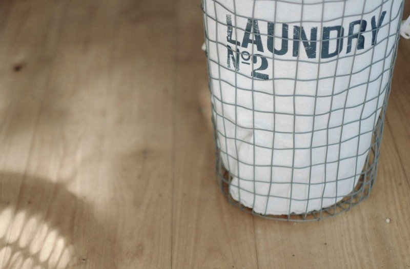 How to Keep Bedbugs Away from your Laundry
