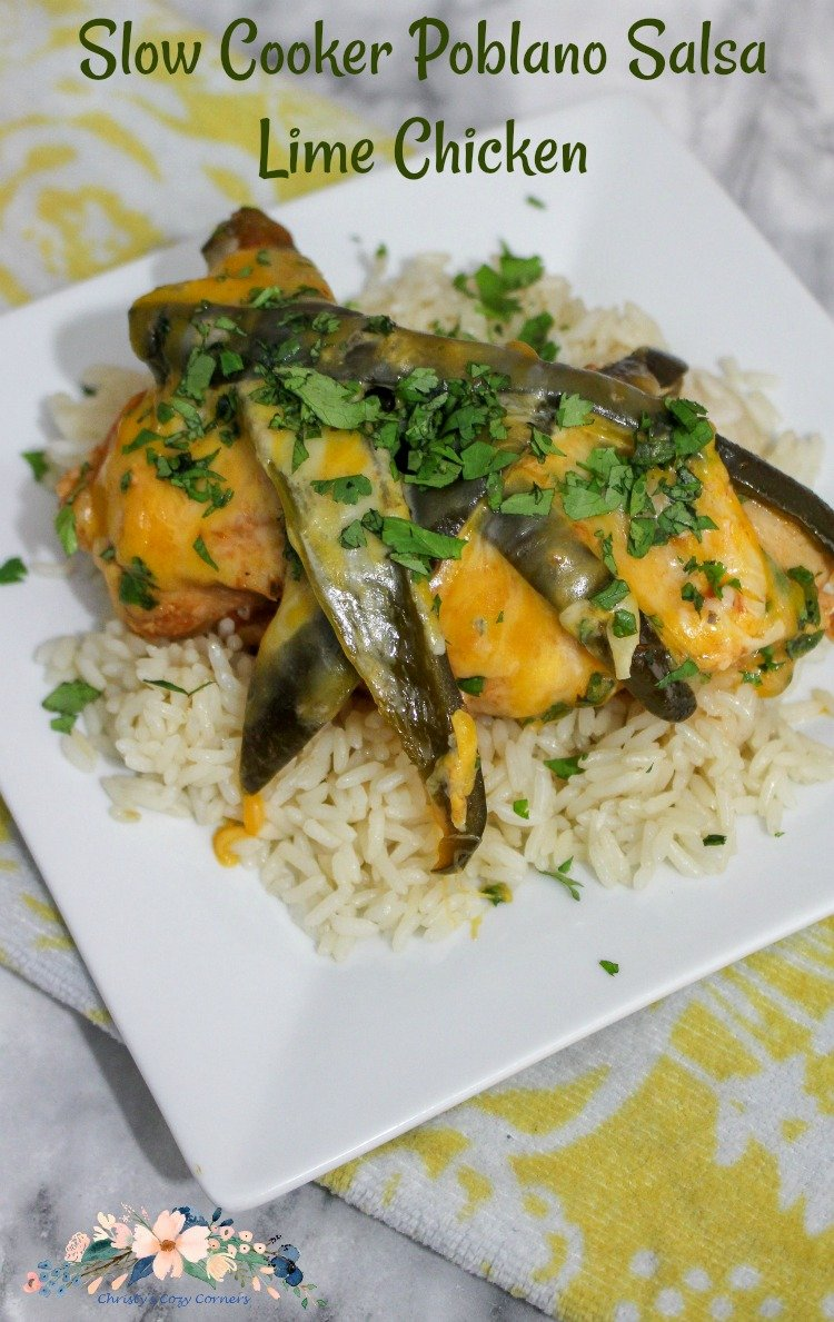 Slow Cooker Poblano Salsa Lime Chicken Recipe