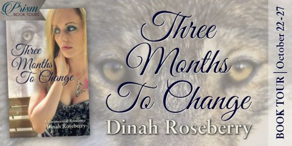 Three Months to Change by Dinah Roseberry Blog Tour