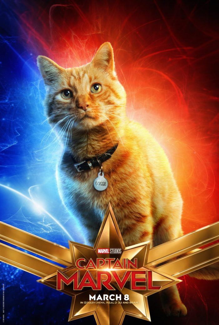 Goose in Captain Marvel