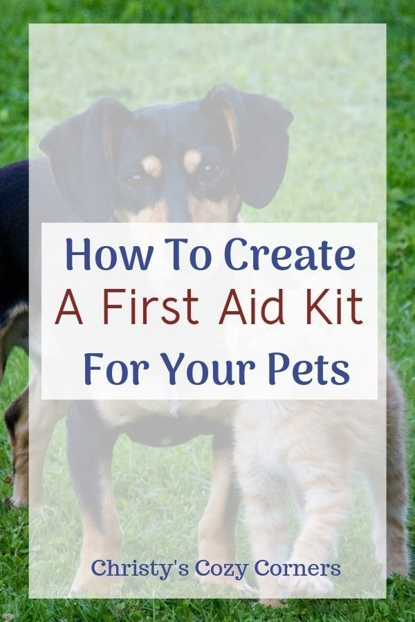 Create a first aid kit and a disaster bag for your pets. Learn the Heimlich maneuver for pets too.