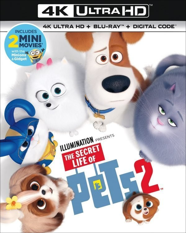 The Secret Life of Pets 2 Digital, Blu-ray and DVD with Bonus Features