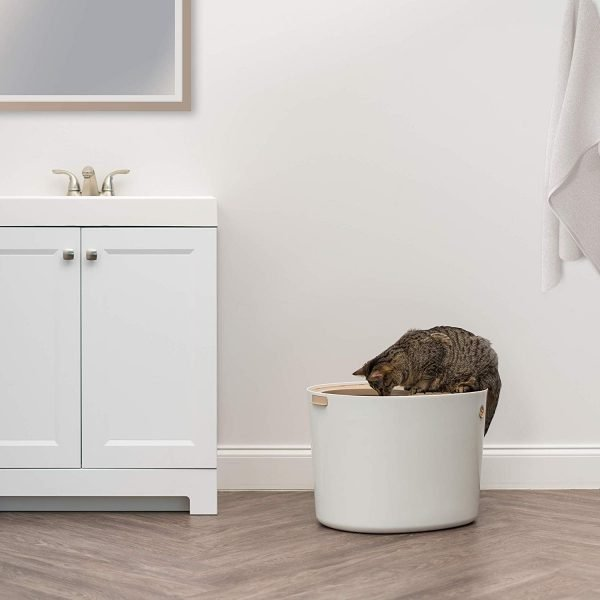 Top entry litter box in a bathroom